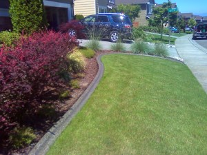 Mower Edge Aggregate Flower Bed